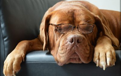 A szemüvegedre leselkedő otthoni veszélyek