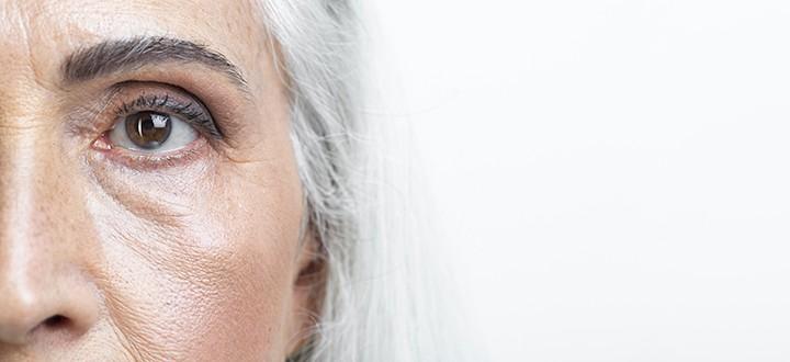 A nyulak fő szembetegségei és kezelése
